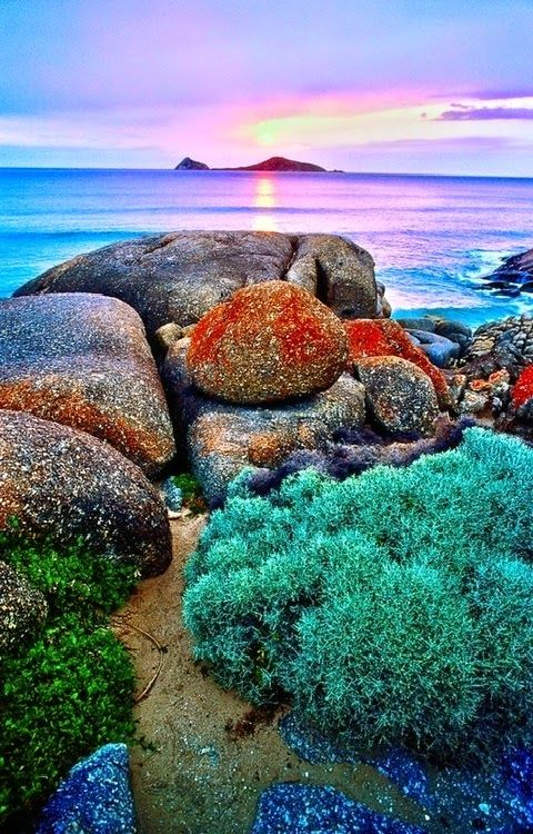 Whisky Bay,Wilsons Promontory National Park