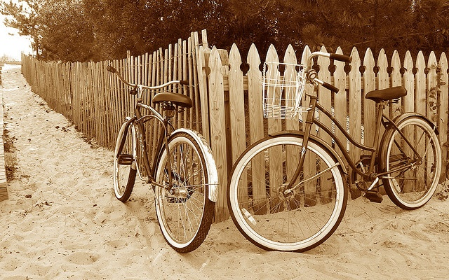 Beach Cruisers ~ hanging out!    CREDITS: Beach bikes awaiting owners, by deborah bullick, via Flickr