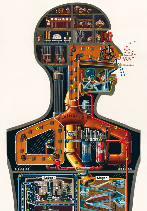 Fritz Kahn. You could develop a drawing to show the internal machine workings. You could try this with paint and or tonal pencil.