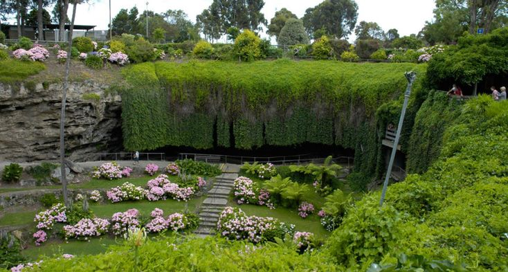 An eclectic list of experiences – including visiting Mount Gambier's Umpherston Sinkhole and swimming with sea lions at Port Lincoln – have made the top 10 of a new South Australian bucket list.