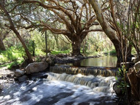 Self catering accommodation, Cape Town, South Africa  Enjoy the serenity of the wild waterfalls and beautiful scenic forest like views