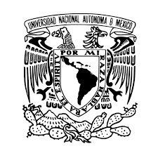 He tomado cursos en línea de la UNAM.