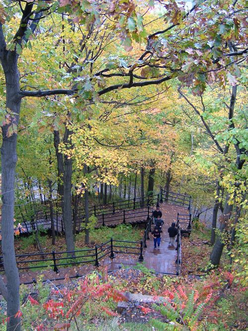 Steps to Mount Royal, Montreal