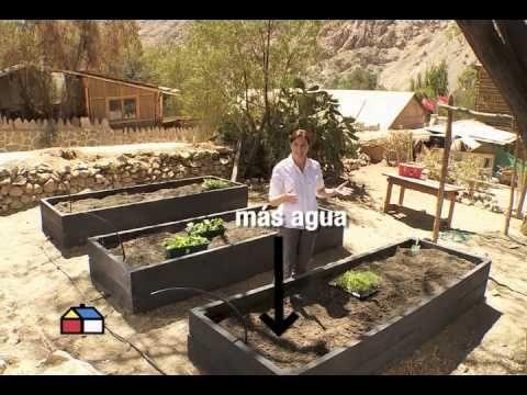 ¿Cómo hacer una huerta en cajones con riego por goteo?  #HUM #DYS