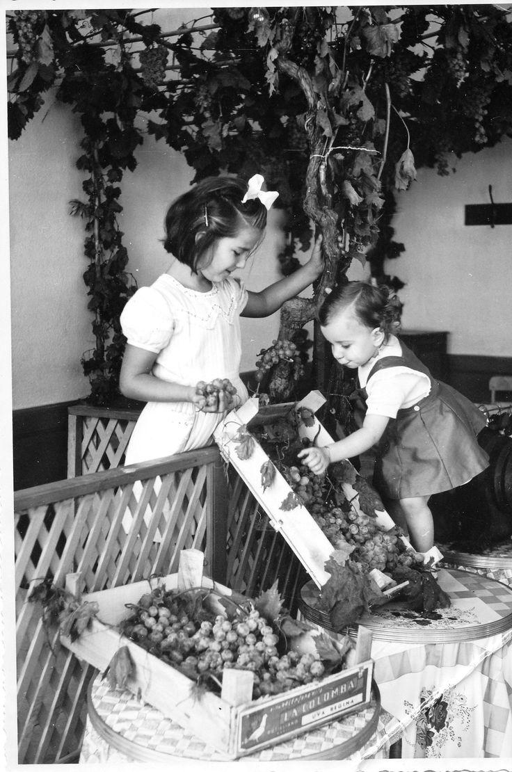 Sagra dell'Uva del 1955, promossa dal Ministero dell'agricoltura e delle foreste nell'ambito della campagna propagandistica per un maggior consumo di uva. Il programma comprendeva un concorso per la miglior presentazione dell'uva tra i gestori di negozi ortofrutticoli, ristoranti, bar e buffet di stazione e per le bancarelle di piazza.  Grapes Festival in Alassio. (Photo: Pastore, 26-09-1955) #Alassio #Riviera #Liguria