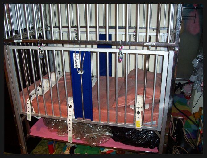 82 Best Littles Beds Images On Pinterest Bed Bedding