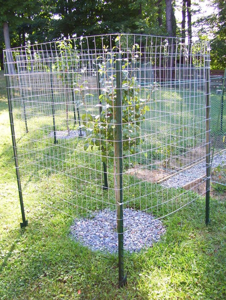 17 best images about deer out of garden on pinterest for Fishing line deer fence