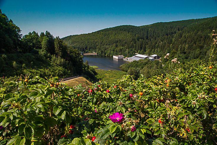 Blick auf das Ausgleichsbecken der Sösetalsperre bei Osterode im Harz