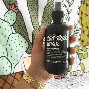 Lush Tea Tree Water Toner, $10.95 | 23 Products Everyone In Their Late Twenties Should Try On Their Skin
