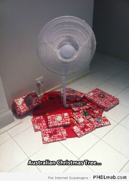 Funny Australian Christmas tree – Welcome to Straya at PMSLweb.com