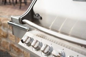 Many people wonder why Napoleon Grills are are the best barbecue in town, well to find out why, click on this link: http://www.napoleongrills.com/blog/napoleon_grill_efficient_winter/