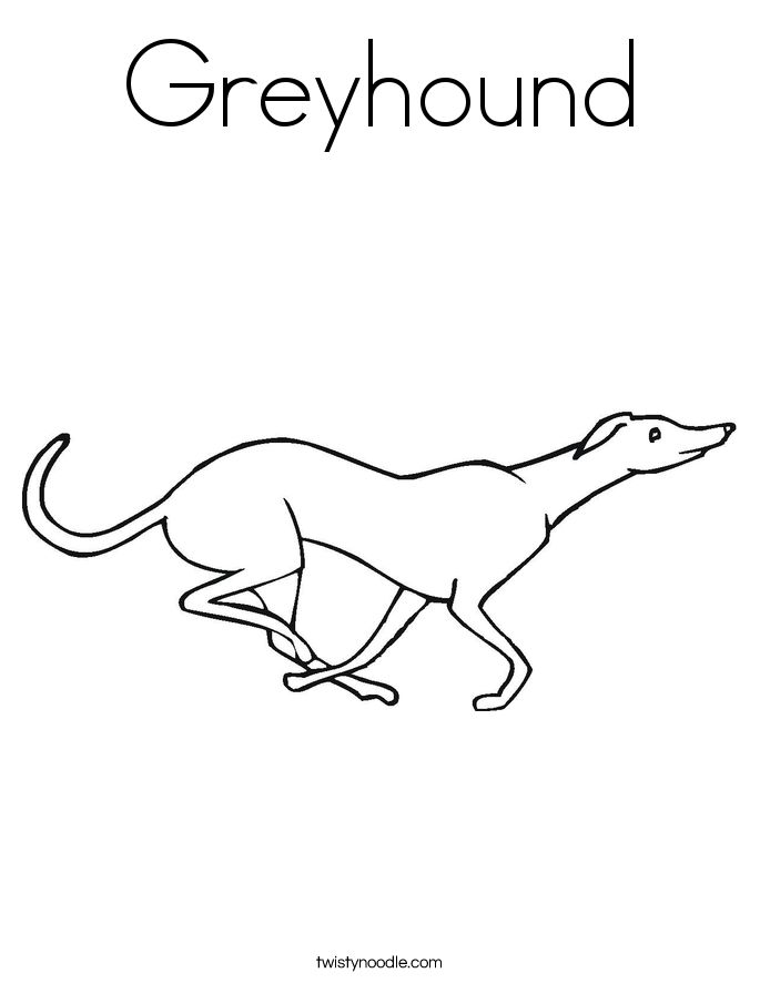greyhound coloring pagepngctok20100303204015 cakepinscom