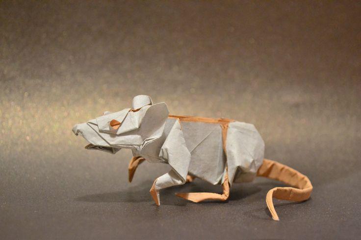 Ratón blanco - Yery J. Astroña | by Jack Dreyil