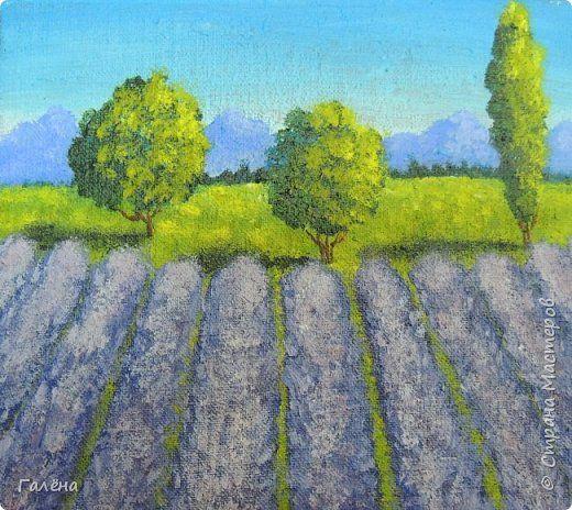 Картина панно рисунок Мастер-класс Рисование и живопись Лавандовый Прованс Краска фото 13