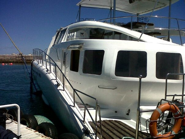 Miroshca - Southern Right Charters in Hermanus, the best boat in the harbour for boat based whale watching.