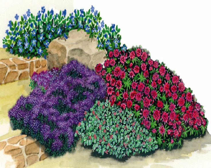 les 13 meilleures images du tableau talus sans entretien sur pinterest talus jardin en pente. Black Bedroom Furniture Sets. Home Design Ideas