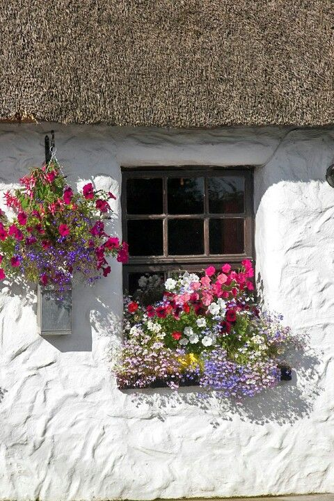 Ireland's cottages - Cris Figueired♥                                                                                                                                                                                 Mais