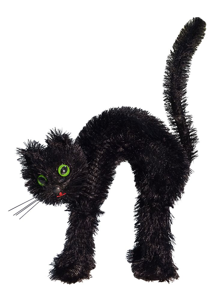 A very scary, hairy Black Cat from a collection of fall décor, $5 to $15. Rite Aid 703-413-5430