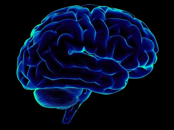 """Nou în scleroza multiplă   Asociația """"Healthy Life"""""""