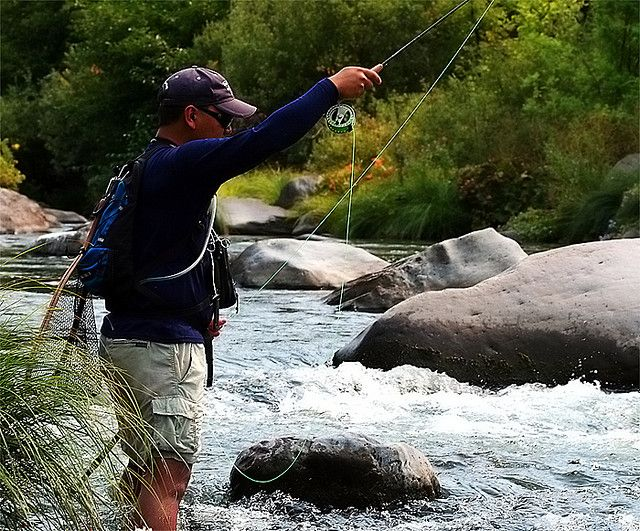 1000 images about fishing on pinterest fly fishing for Fly fishing northern california