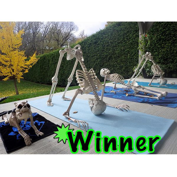 Yoga Anyone Crazy Bonez Skeletons Pinterest Yoga