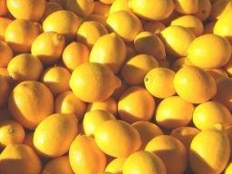 Как и почему нужно использовать весь лимон без отходов — Полезные советы