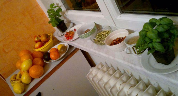Start of living kitchen! :D