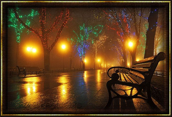 Park Bench At Night Night Light Pinterest Parks