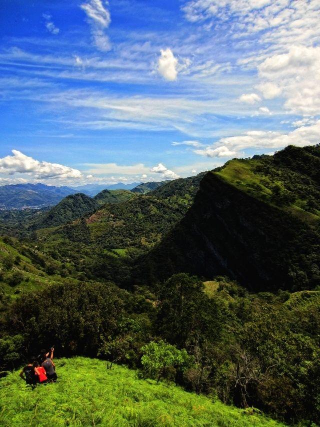 Colombian Montanas