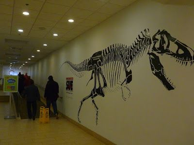 Sue exhibit in Reno's Discovery Museum