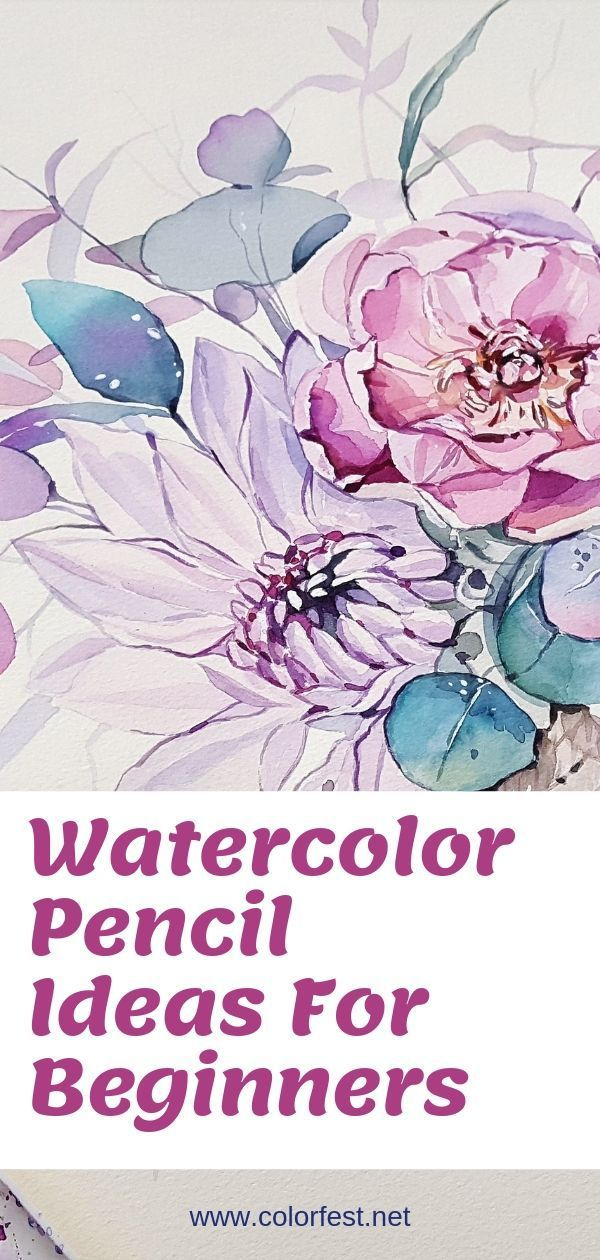 How To Use Watercolor Pencils Watercolor Pencils Techniques