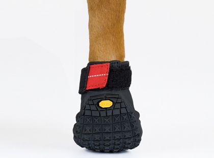Eventually Harper WILL own these for our trail runs.