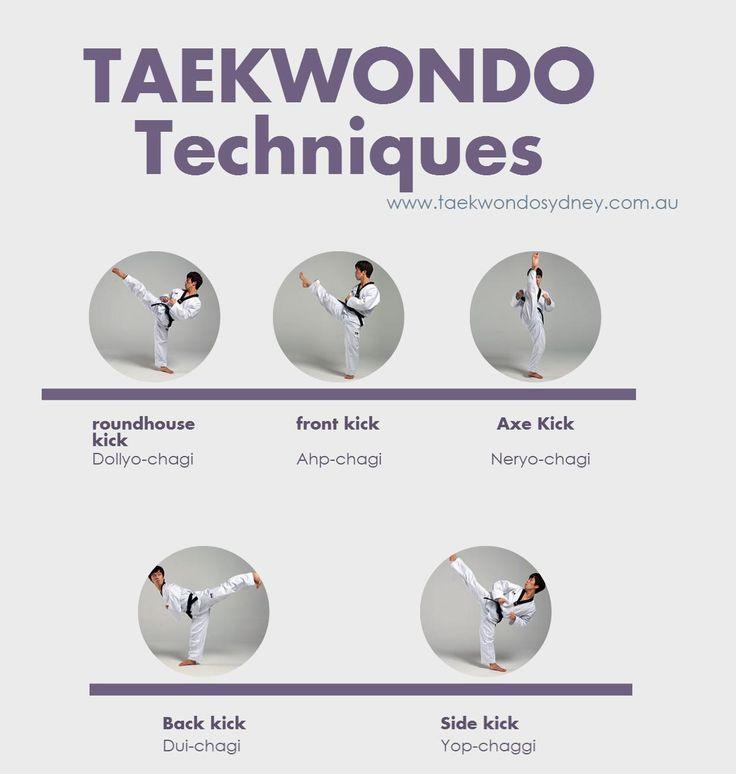Taekwondo Techniques | Visual.ly