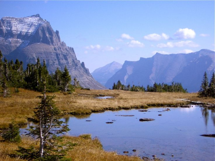 Read our articles about hiking in Glacier National Park With Road Scholar. And there's more to come.