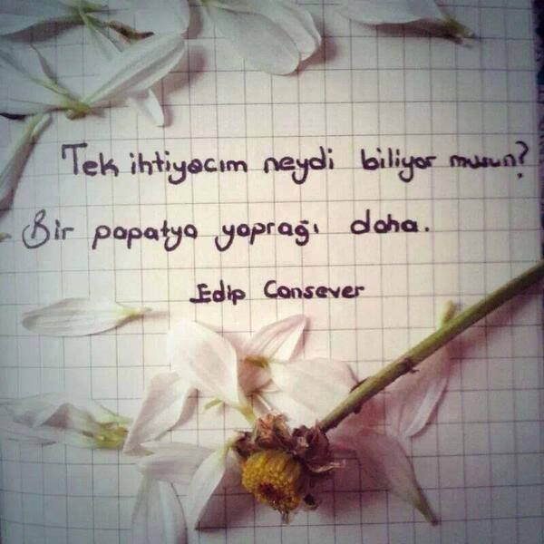 Resimli papatya sözleri ~ Güzel Sözler, Anlamlı Sözler, Aşk Sözleri, Resimli Sözler