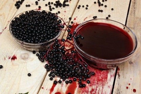 Black elderberry extract may improve obesity-related metabolic disturbances like triglyceride(TAG) levels, inflammation and insulin resistance, research in mice finds.