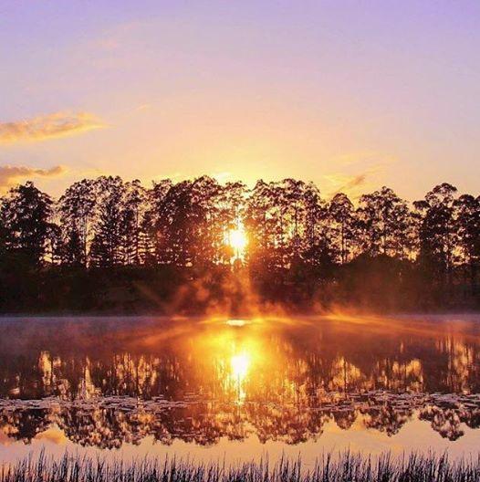 Lake MacDonald at first light...stunning!