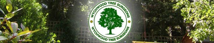 Tree Surgeons London - Tree Surgeons London. Wychwood tree surgeons provide tree surgery, tree felling, tree removal and all types of domestic and commercial tree works in London and Essex.  Wychwood tree surgeons emergency tree surgeons London, 24 hour call out for London.