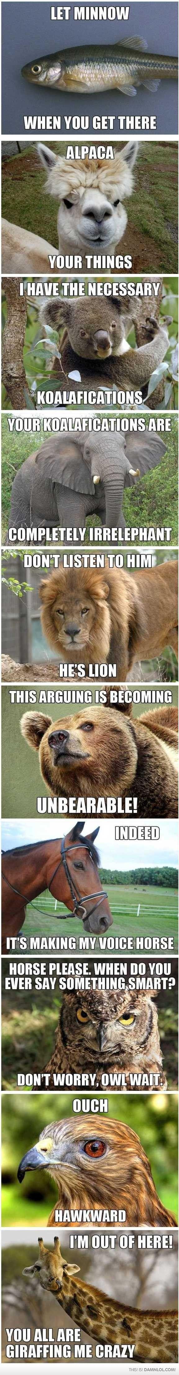 hehehe: Animal Jokes, Animal Humor, Funny Stuff, Love Puns, Animal Puns, Funny Animal, So Funny, Funny Puns, Animal Memes