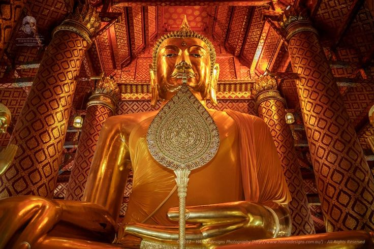 Inside an Ayutthaya temple https://www.facebook.com/HannaDesignsPhotography?hc_location=timeline