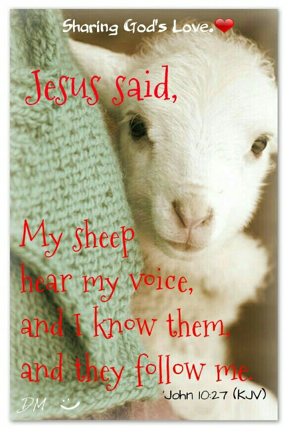 ❤ 'Ezekiel 34:11-16 (KJV) For thus saith the Lord God; Behold, I, even I, will both search My sheep, and seek them out. As a shepherd seeketh out his flock in the day that he is among his sheep that are scattered; so will I seek out My sheep, and will deliver them out of all places where they have been scattered in the cloudy and dark day. I will seek that which was lost, and bring again that which was driven away, and will bind up that which was broken, and will strengthen that which was…