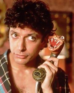 Jeff Goldblum: Movies Stars, Immens Awesome, Movie Propaganda, Movies Propaganda, Favorite Funnies, Candyman Movies, Immen Awesome, Fav People Movies, Funnies People