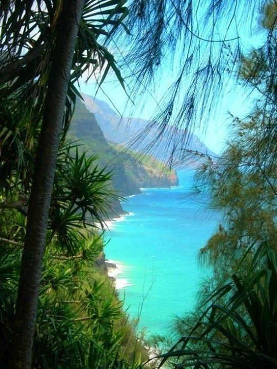The Big Island - Hawaii...