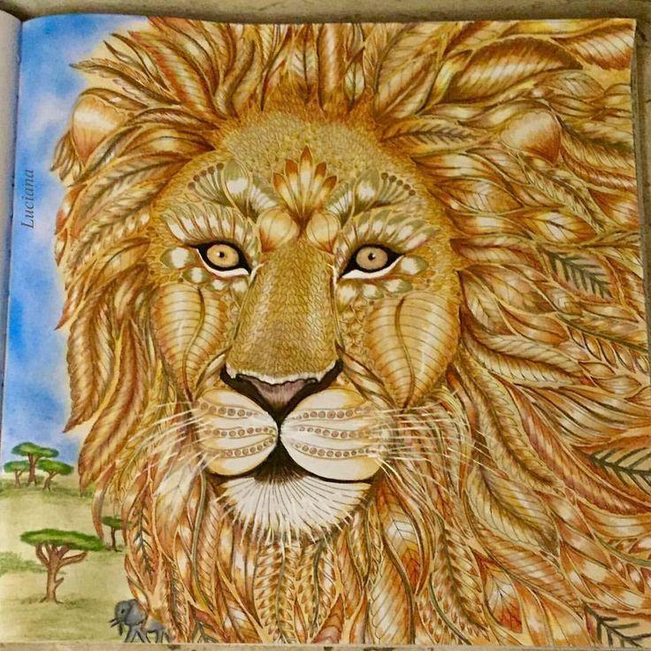 The lion king watching over his kingdom. Livro Wild  Savannah #milliemarotta #milliemarottabooks #boracolorirtop #animalkingdonbook #tropicalwonderlandcoloringbook #editorasextante #colorindolivros #oceanoperdidotop #florestaencantada #jardimdascores #jardimsecretotop #jardimsecretofans #jardimsecretotopmg #reinoanimaltop