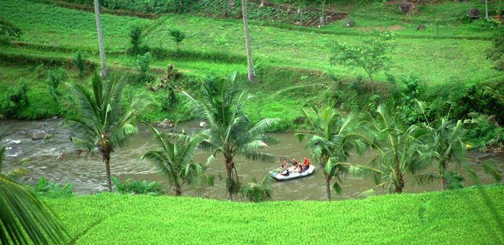 Рафтинг Аюнг,  экскурсии на бали, бали экскурсии, экскурсии бали, экскурсии на бали цены, экскурсия бали, экскурсия на бали, стоимость экскурсий на бали, остров бали экскурсии, экскурсии бали индонезия, экскурсии на острове бали, экскурсии по индонезии, отдых на бали экскурсии, бали ява экскурсии, трансфер на бали, бали, серфинг, дайвинг, круизы, рафтинг, рыбалка, сафари парк, сафари на бали,  экскурсии на комодо и флорес   http://balilive.ru/excursions/rafting-ayung-21.html