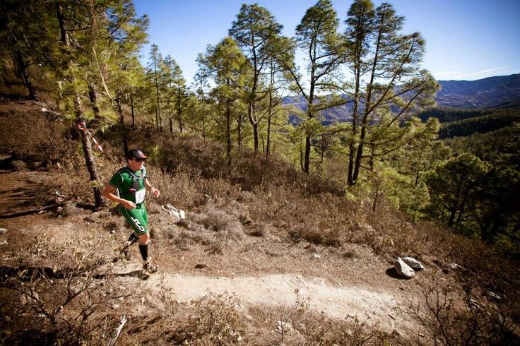 Fran Cedrés running the Artenara Trail in Gran Canaria