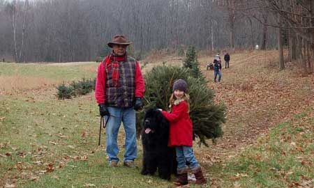 Country Heritage Farm Choose and Cut Christmas Tress