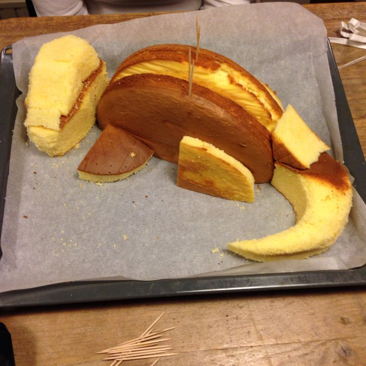 Voorbereidingen dino taart