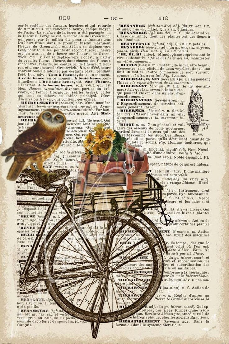 Owl on bike + french dictionary page. I have a pic that has a branch reaching across three pages from a book. It has a sepia tint to it. I quite like that sort of idea??