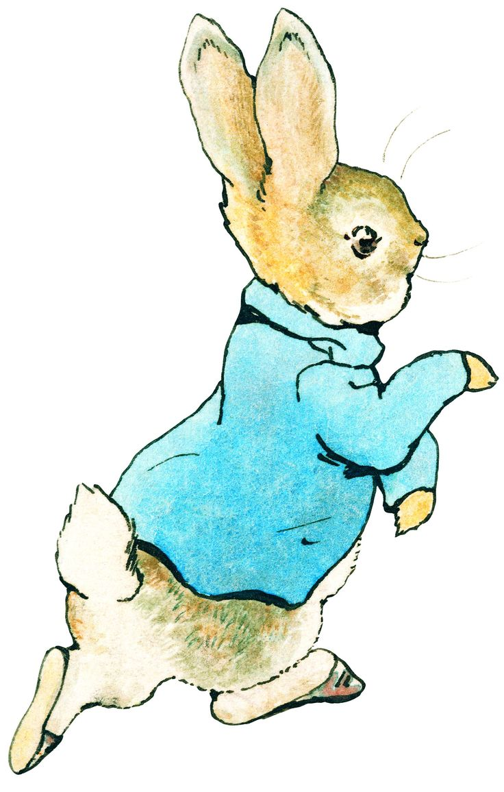 37 best book characters images on pinterest book characters rh pinterest com  peter rabbit clip art free